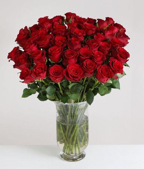 50 Burgundy Roses