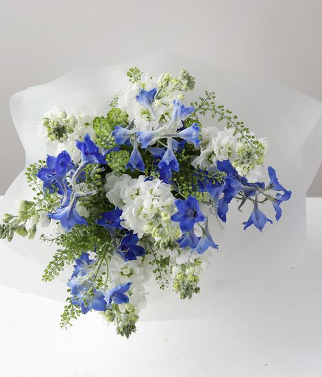 Delphinium and Stocks Jug