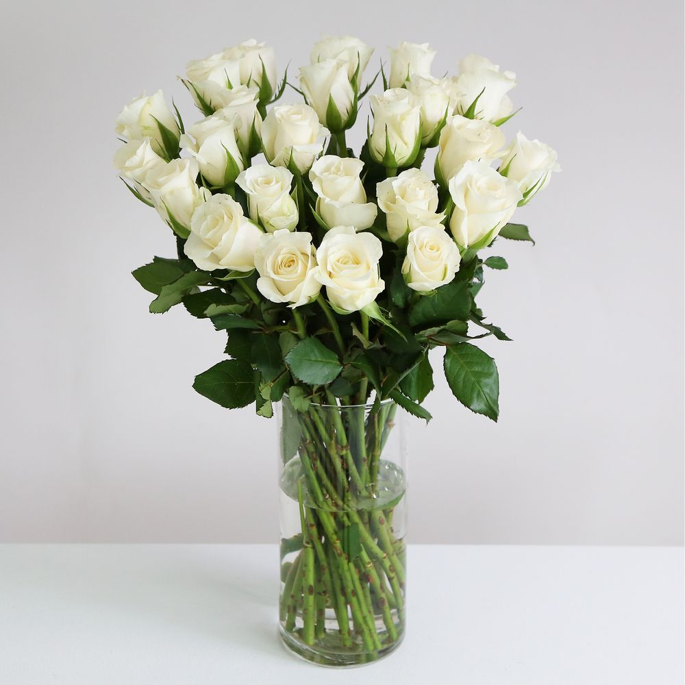 24 Fairtrade White Roses - flowers