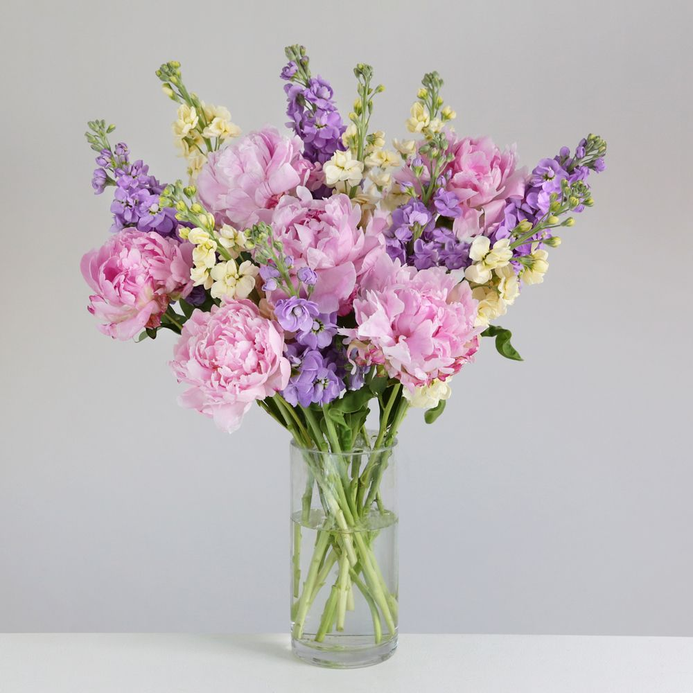 British Stocks and Peonies - flowers