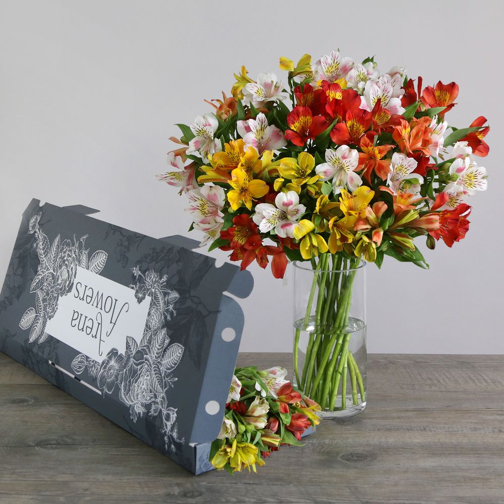Letterbox flowers flowers online send flowers flowers delivered letterbox mixed alstroemeria flowers izmirmasajfo