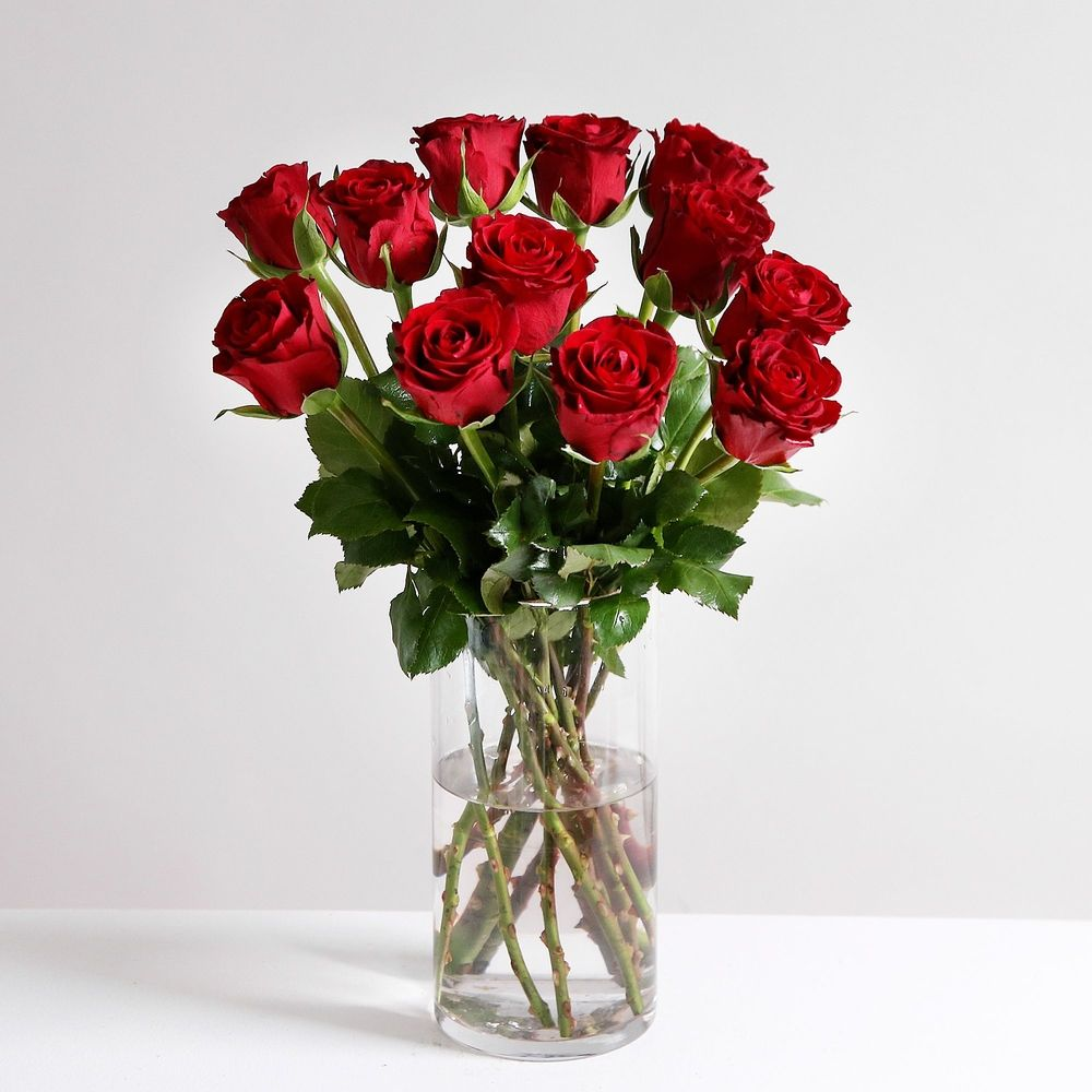 A Dozen Classic Red Roses - flowers