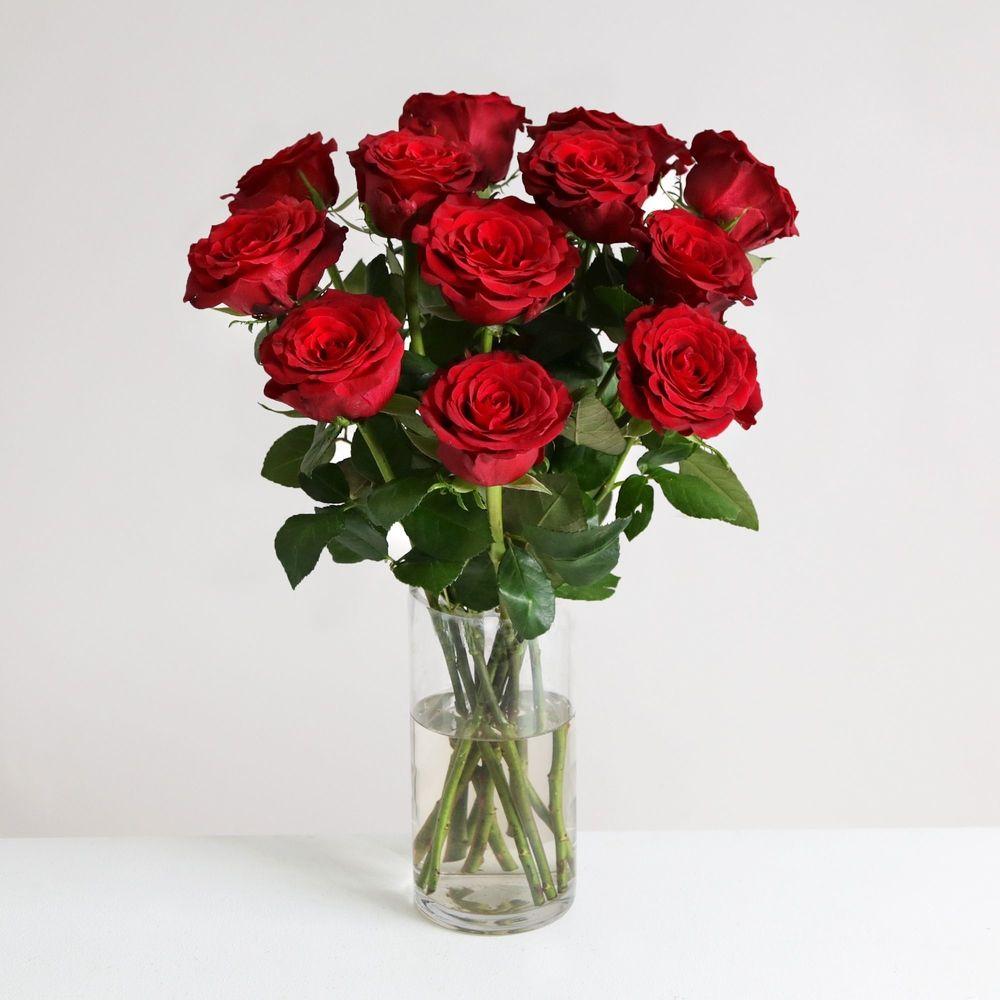 A Dozen Burgundy Roses - flowers