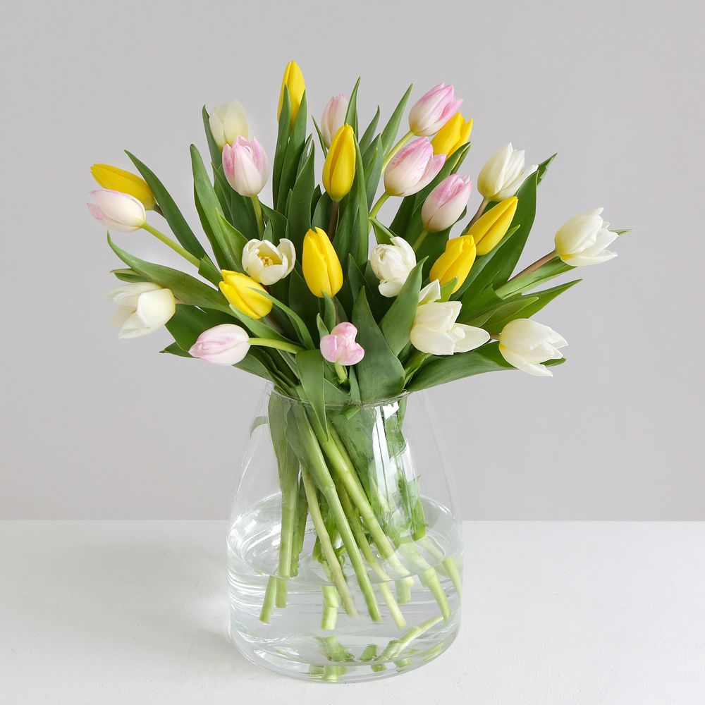 Mother's Day Tulips - flowers