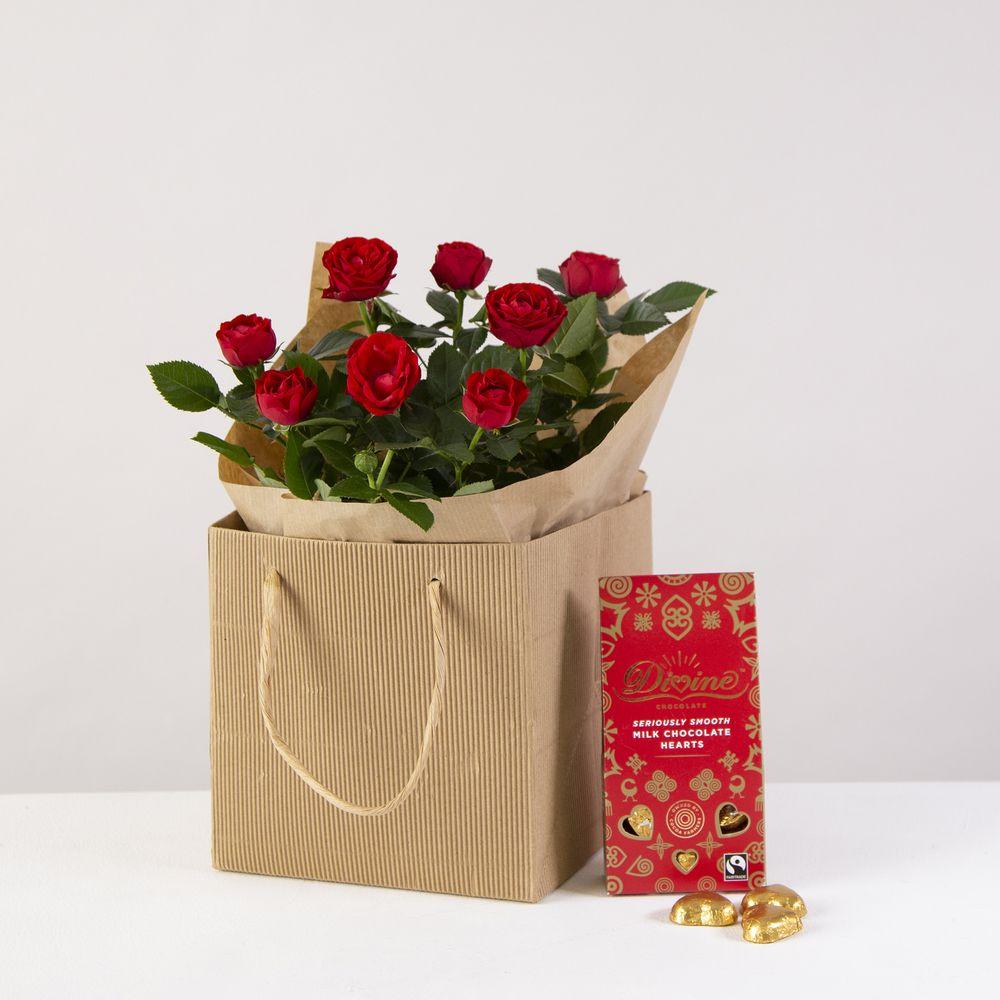 Romantic Rose Plant Gift Set - flowers