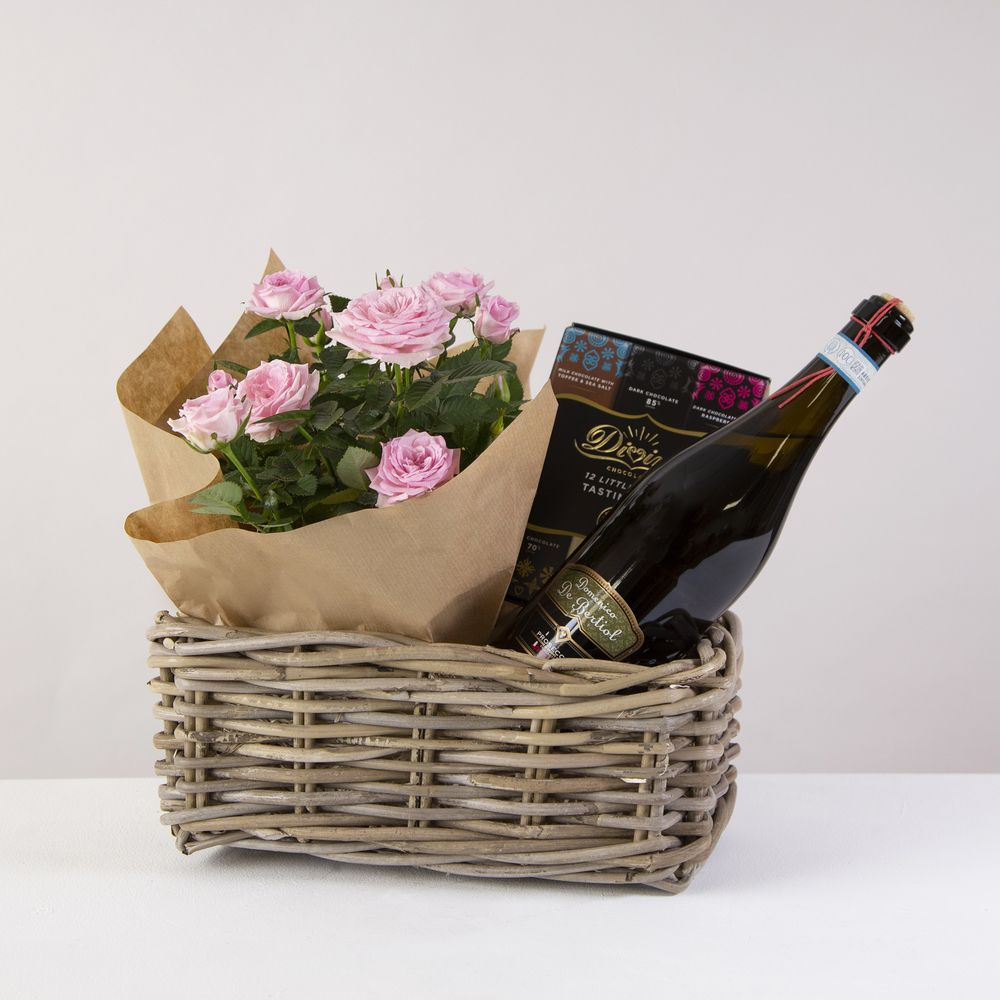 Prosecco and Rose Plant Hamper - flowers