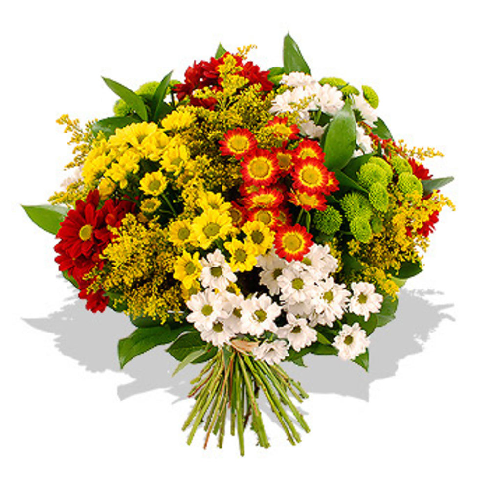 Chrysanthemum Bouquet - flowers