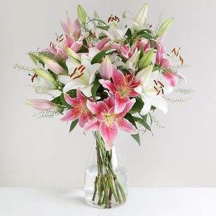 Mixed Oriental Lilies