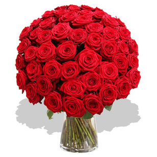 Mass Of Fifty Red Roses