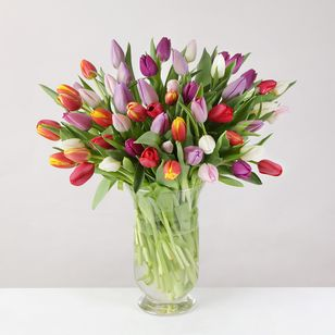 Mixed Tulips | 20 Extra Tulips For Free