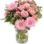 Pink Lemonade - flowers