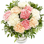 Pastel Carnations - flowers