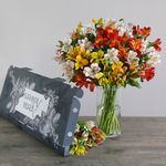 Letterbox Mixed Alstroemeria | Free Chocolate - flowers