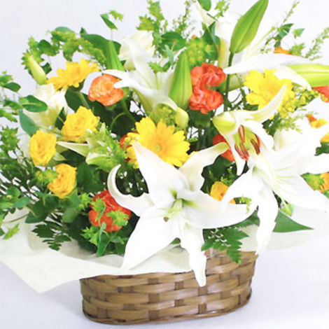 Deluxe Lily Arrangment