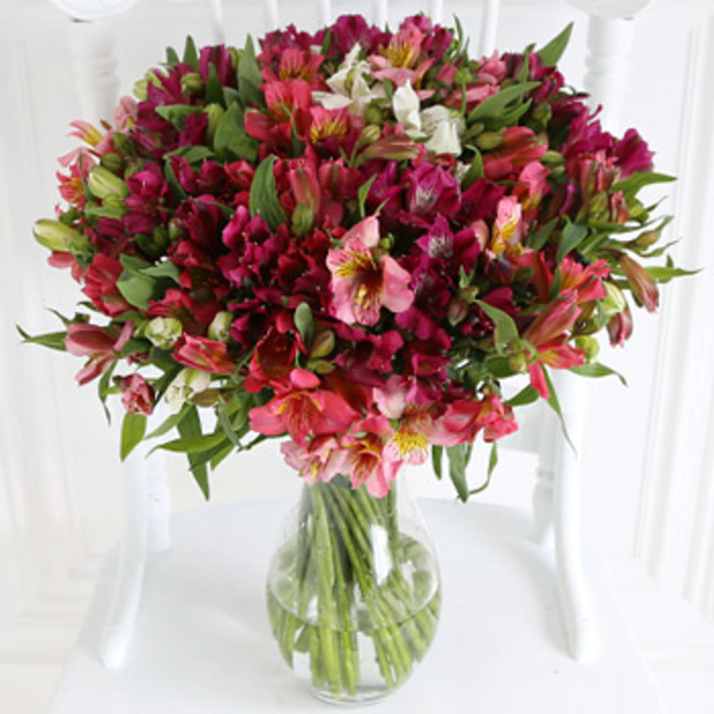 Image of Premium British Alstroemeria - flowers
