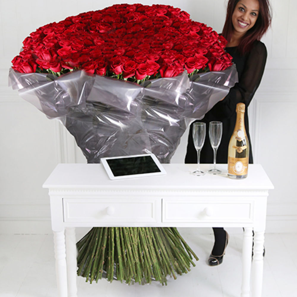 1000 of The Worlds Largest Roses Cristal & iPad  flowers