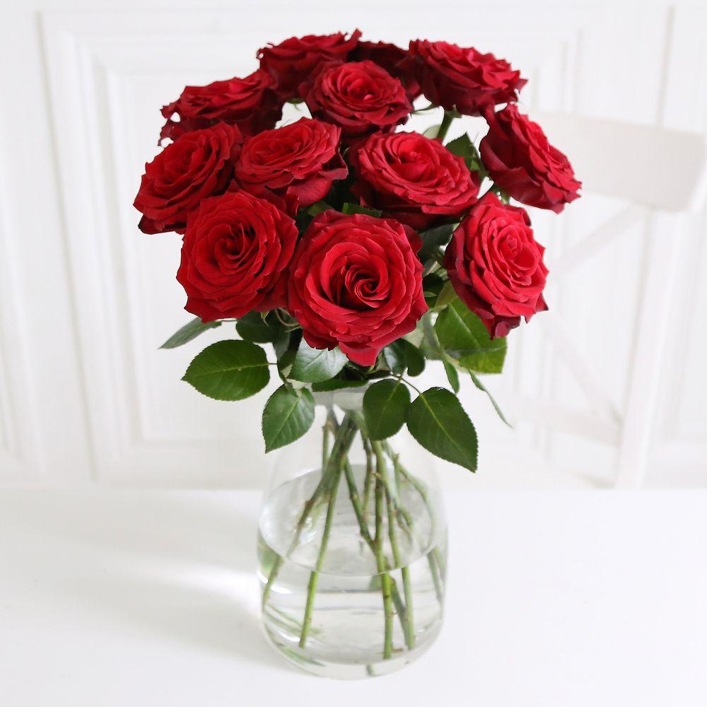 Image of A Dozen Burgundy Roses - flowers
