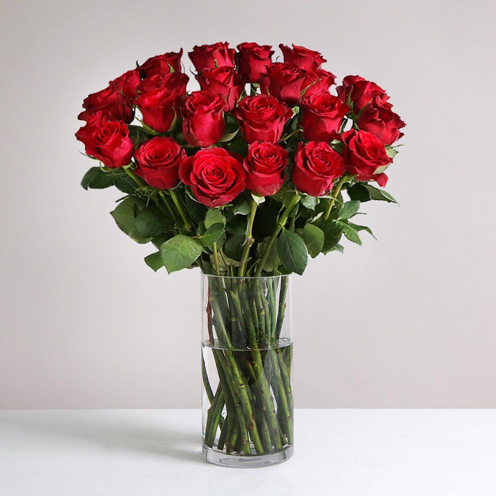 Image of Two Dozen Burgundy Roses - flowers