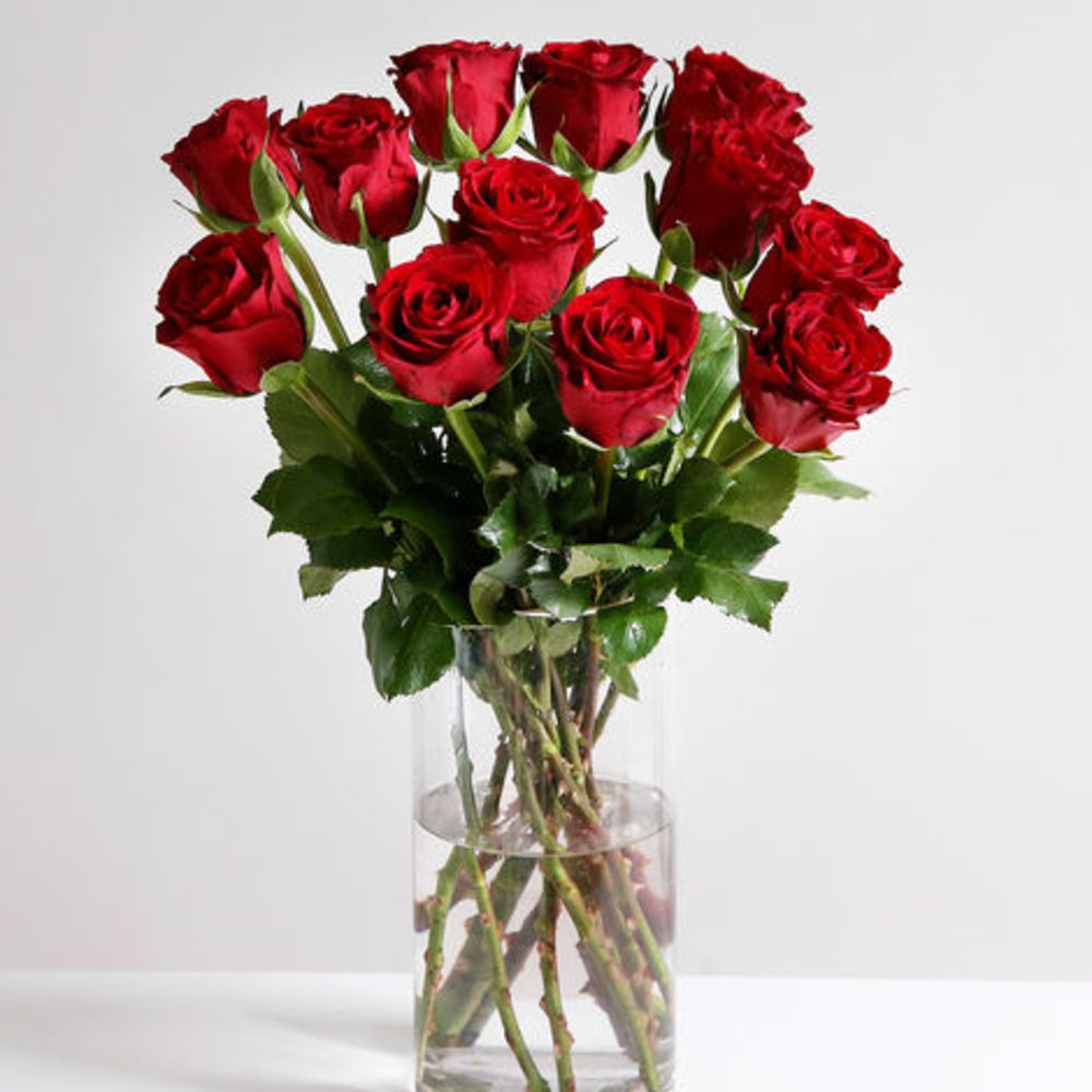 A Dozen Valentine's Red Roses - flowers