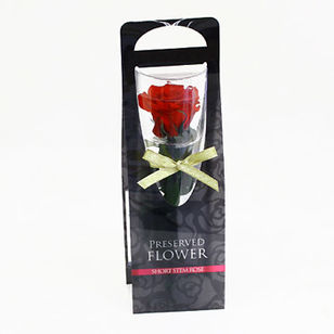 Preserved Red Rose in Case