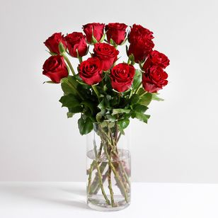 Dozen Red Fairtrade Roses